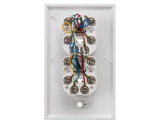 2-Port Wall Plate with 6P6C Jack