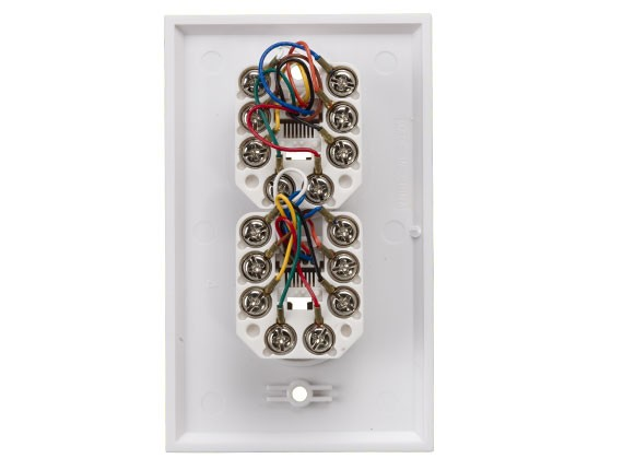 2-Port Wall Plate with 8P8C Jack