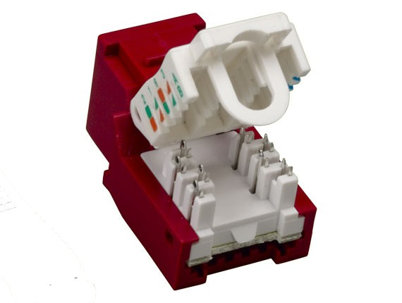 Cat6 RJ45 UTP Tool Less Keystone Jack Red Color