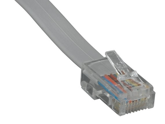 25ft RJ45 8P8C Straight Modular Cable